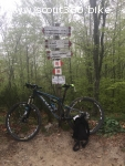 vendita Mountain Bike full